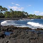 Hawaii 2011 by Francois Ward