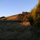 Eildon Lake - Bonnie Doon Hills Vic Australia  by adgray
