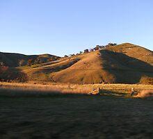 Eildon Lake - Bonnie Doon Hills Vic Australia 2 by adgray