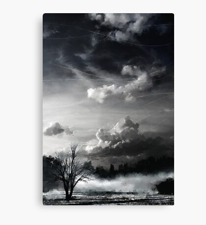 ways of the absolute Canvas Print