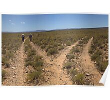 Karoo landscape - Choices Poster