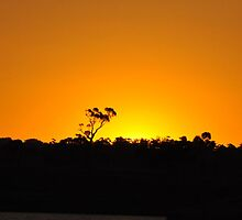 Sunset  on  New Year  eve  2011 by Jane  mcainsh