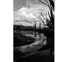 Mitta River, North East Victoria Photographic Print