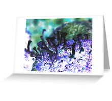 Psychedelic Lichen Greeting Card