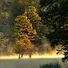 Autumn Gold by Carolyn  Fletcher