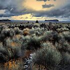 Home Is Where The Heart Is by Charles & Patricia   Harkins ~ Picture Oregon
