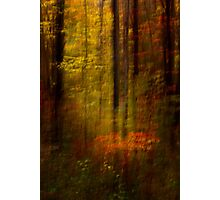Rising Young Star Photographic Print