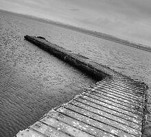 Walk the plank by hannahbraid
