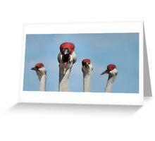 Curious Cranes Greeting Card