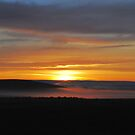 The Last Sunrise Of 2011 by NancyC