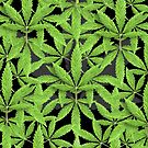 Pot Leaf Background by TinaGraphics