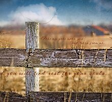Fence and Barn by JulieLegg