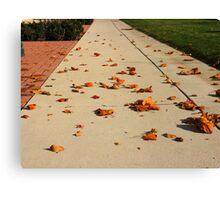 Orange Leaf Road Canvas Print