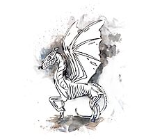 Harry Potter Thestral Photographic Print
