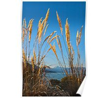 Lake Hawea, New Zealand Poster