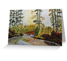 Back Forty Pond Greeting Card