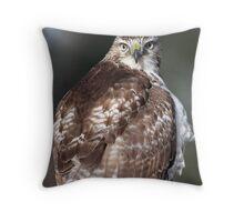 Hawk Eye(s) / Red Tail Hawk Throw Pillow