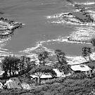 Tropical shoreline by jyruff