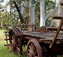 Cart at Turner Cottage by kalaryder