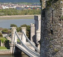 Conwy Castle and Bridge by kalaryder