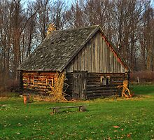 """"""" Cabin - Baltimore Woods, Camillus NY """" by DeucePhotog"""