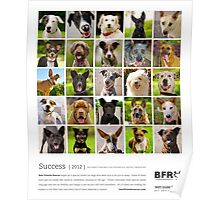 Best Friends Rescue 2012 Poster