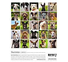 Best Friends Rescue 2012 Photographic Print