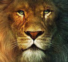 Lion King by mrtdoank
