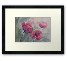 Poppies in my garden Framed Print