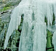 The Icefall, Maligne Canyon, Jasper National Park, Alberta, Canada by Adrian Paul