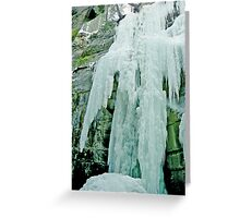 The Icefall, Maligne Canyon, Jasper National Park, Alberta, Canada Greeting Card