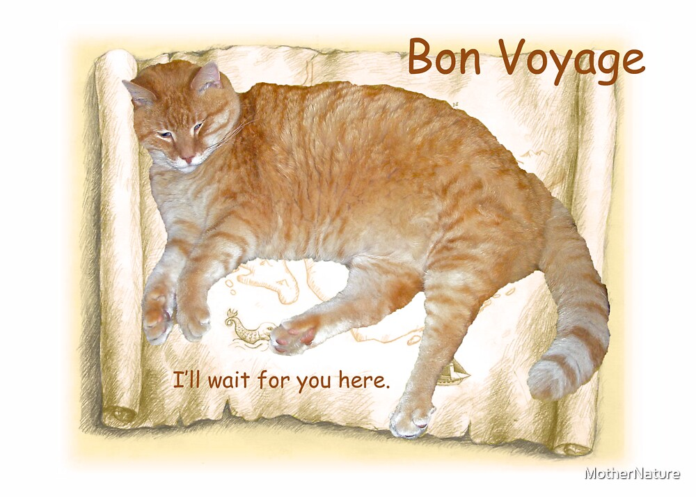 Bon Voyage Card - Cat Stays Home by MotherNature