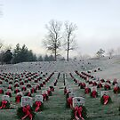 Cold Morning at the Cemetery by Jimmy Phillips