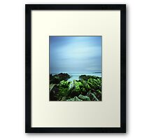 """Beachular Mosstrophy"" ∞ Barragga Bay, NSW - Australia Framed Print"