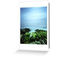 """Beachular Mosstrophy"" ∞ Barragga Bay, NSW - Australia Greeting Card"