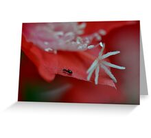 Ant Power Greeting Card