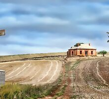 Country South Australia by Shannon Rogers