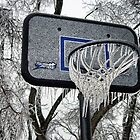B-Ball Anyone? by Carolyn  Fletcher