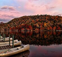 Canoes In Fall Color by Carolyn  Fletcher