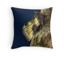 burnished brass moth. Throw Pillow