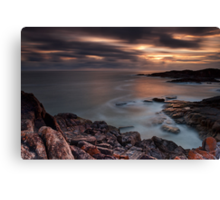 Looking for tomorrow  Canvas Print