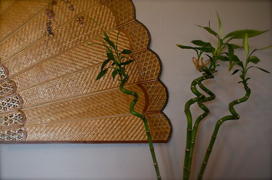 Chinese fan and bamboo  by Sarah Horsman