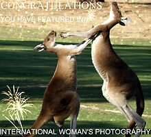 My Banner for International Woman's Photography Challenge by Rocksygal52