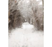 Enchanted winter  Photographic Print