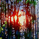Evening Sun 3 by doodledesign