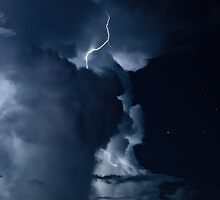 In the Storm by David Wynia