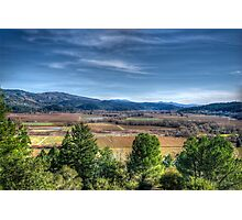 Napa Valley Photographic Print