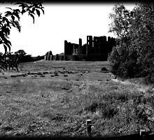 Kenilworth Castle #2 by Dennis  Greenhill
