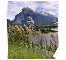 Mount Rundle and Vermillion lakes Poster