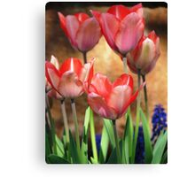 Harmony of Spring Canvas Print